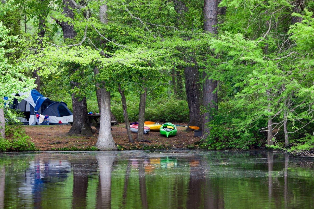 Island campsite at Trap Pond State Park